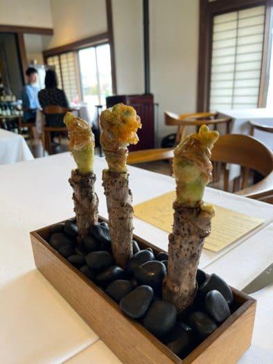 究極の山菜料理をフレンチで食べるなんて!