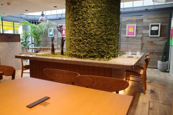大阪と京都の大人気店のコラボ麺が表参道に!